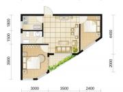 朗琴国际F户型2室2厅1卫60.26㎡