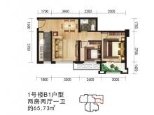 唐城中岳汇B1户型2室2厅1卫 65.75㎡