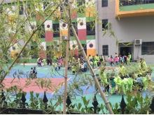 阳光栖谷香港伟才国际幼儿园