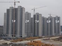 金煌天津港