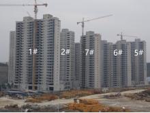 金煌天津港实景图
