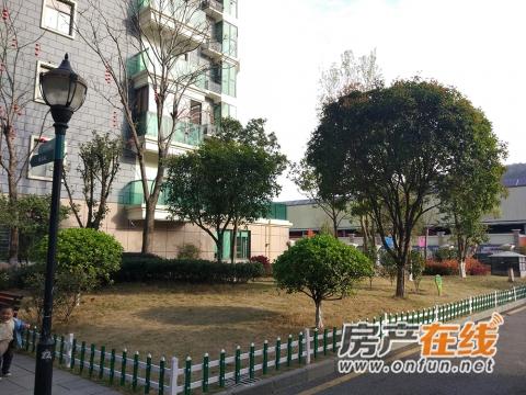 祥安东城国际花园实景图