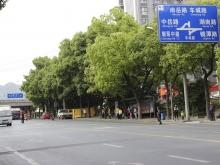 中岳华庭交通图