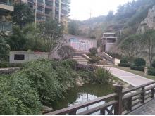 泰山绿谷2017年11月实景
