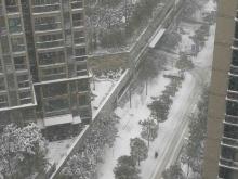 阳光栖谷2018年1月雪景图