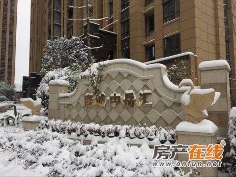 唐城中岳汇实景图