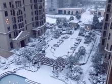 卢浮宫2018年1月雪景图