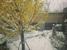 恒大城2018年1月雪景图