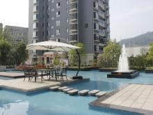 祥安东城国际花园玫瑰苑实景图