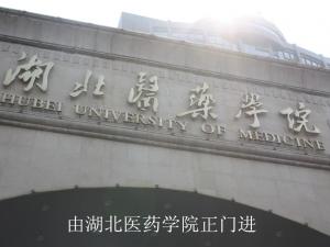 中式华宅之道和天下 营销中心位于太和花园内
