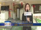 成邦·华夏公馆开发商介绍