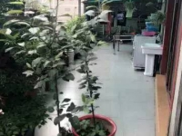 北京路香格里拉城市花园210平复古精装修房