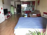 东岳路 风情巴黎 一室一厅51平米精装 房间通透 安心舒适