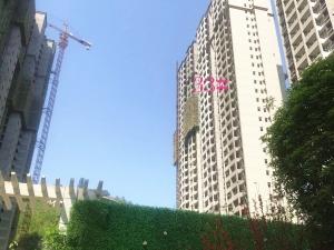 阳光栖谷4月份最新楼盘动态 33号楼1单元预计本周末开盘!