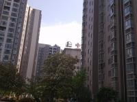 双证齐全随时过户北京路 九龙太 阳城 简装50万 两居