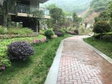 视频看房:泰山绿谷小区环境实拍