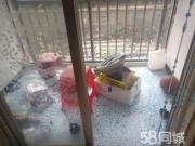 畔山林语精装修2居室家电齐全拎包入住环境优美