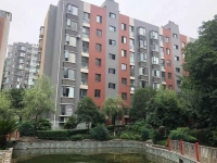 上海路 重庆路交会 北京路东方坐标城 环境美 房更美 价格低