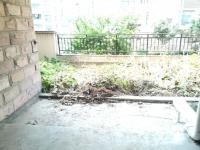 带前后院子 北京南路凤凰香郡 花园洋房 毛坯4室 附带地下室