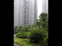 张湾区红卫兴丽城新房出售