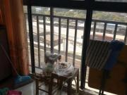 火车站冠城美立方精装两室85.37平50万全款转合同