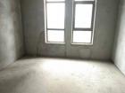 盧浮宮 全新毛坯大三室房 戶型采光好 每平米低至6500