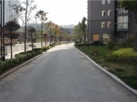 一流景观,低密度花园,和昌豪景湾 70万 3室2厅1卫 精装